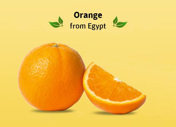 Buy Egypt oranges Online in Chennai