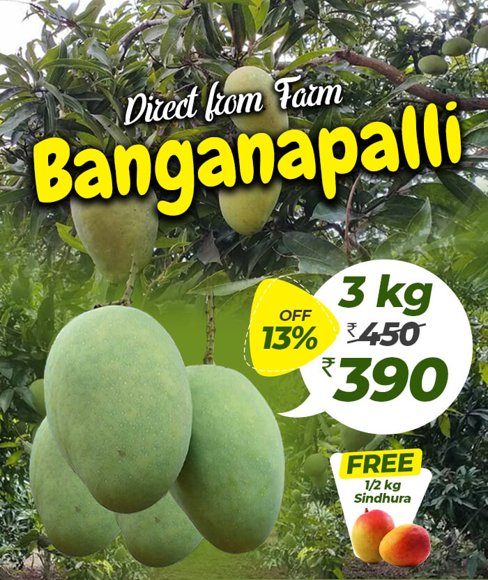 3kg Banganapalli mango online in chennai