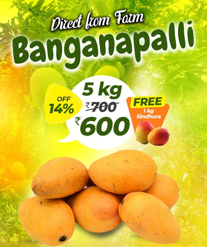 5kg bagnapalli mango online in chennai