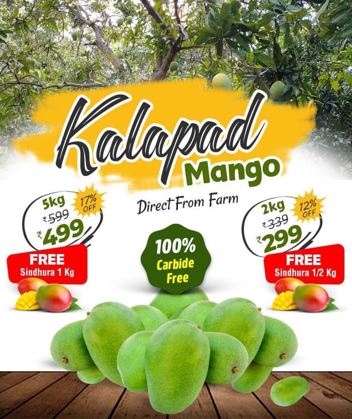 buy kalapad mango fruits online in chennai