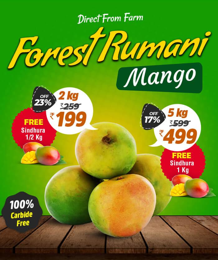 buy rumani mango fruits in chennai