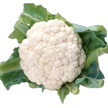 1599659693buy-cauliflower-vegetables-online-in-chennai_medium
