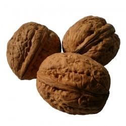 Buy Walnut pack of 200 grams Online In Chennai