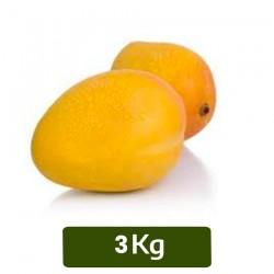 Buy 3Kg Alphonsa Mango / Salem Gundu Mango Online In Chennai