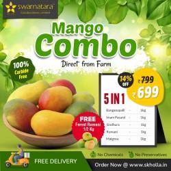 Buy Mango 5 in 1 Combo Online In Chennai