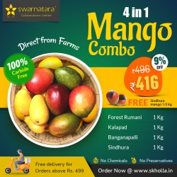 Buy Mango 4 in 1 Combo Online In Chennai