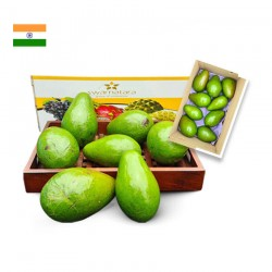 AVOCADO BOX - SHIPPED PAN INDIA