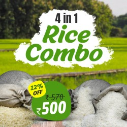 4 in 1 Rice Combo