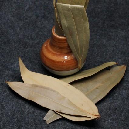 16277144861623766406bay-leaves-in-chennai_medium