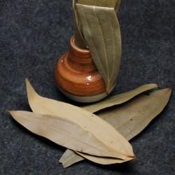 Skholla Bay Leaves / biriyani ilai 50 gram Pack