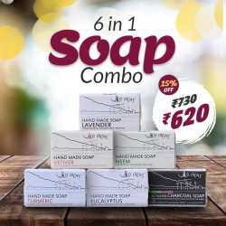 6 in 1 Soap Combo